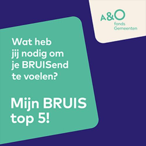 BRUIS top 5 kaart digitaal 300