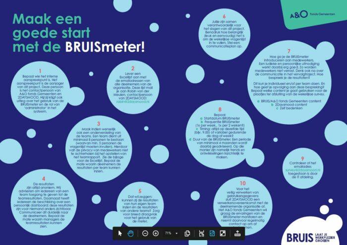 BRUISmeter checklist